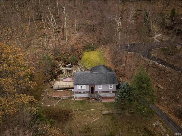 4 Wonderland Drive, Hopewell Junction, NY 12533 (MLS #5120673) :: The Home Team