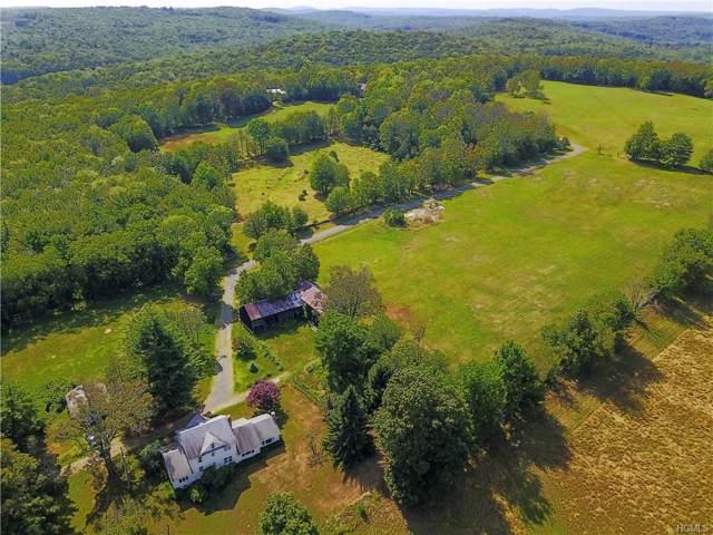 2299 Ulster Heights Road, Fallsburg, NY 12788 (MLS #H5120687) :: Cronin & Company Real Estate