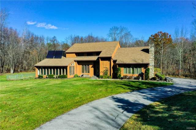 6 Kyle Court, Hyde Park, NY 12538 (MLS #5120825) :: The Anthony G Team