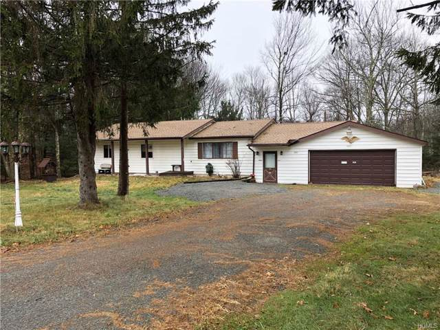 3001 State Route 42, Forestburgh, NY 12777 (MLS #5120970) :: Mark Boyland Real Estate Team