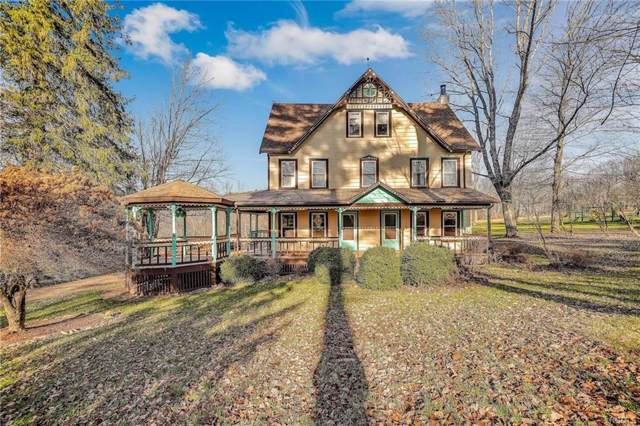 216 Villa Roma Road, Callicoon, NY 12723 (MLS #5120980) :: William Raveis Baer & McIntosh