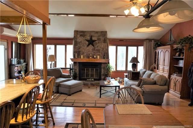 1508 Indian Springs Road, Pine Bush, NY 12566 (MLS #5121038) :: William Raveis Baer & McIntosh