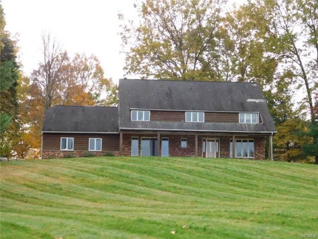 99 Pirog Road, Pine Bush, NY 12566 (MLS #5121566) :: William Raveis Baer & McIntosh