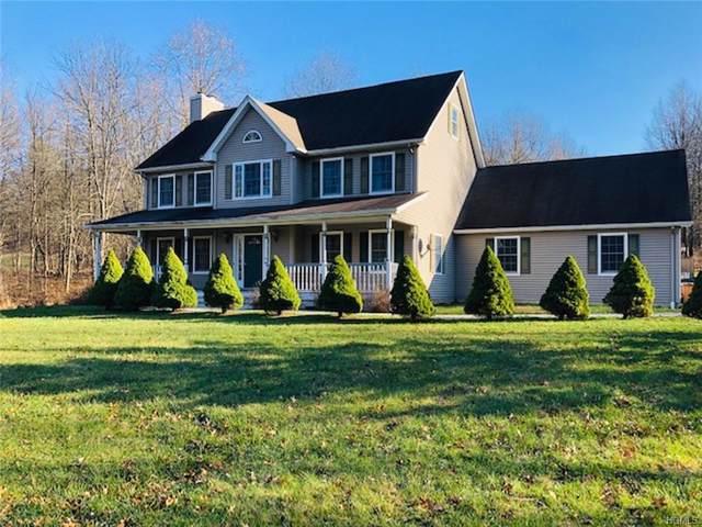 23 Saddleback Ridge Road, Gardiner, NY 12589 (MLS #H5122257) :: Cronin & Company Real Estate