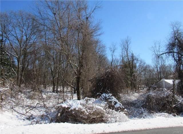Andrews Road, Lagrangeville, NY 12540 (MLS #5122489) :: Mark Boyland Real Estate Team