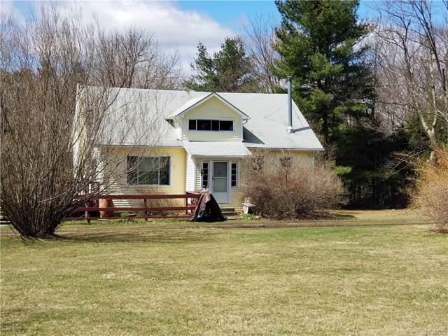 905 Mount Vernon Road, Wurtsboro, NY 12790 (MLS #5122778) :: William Raveis Baer & McIntosh