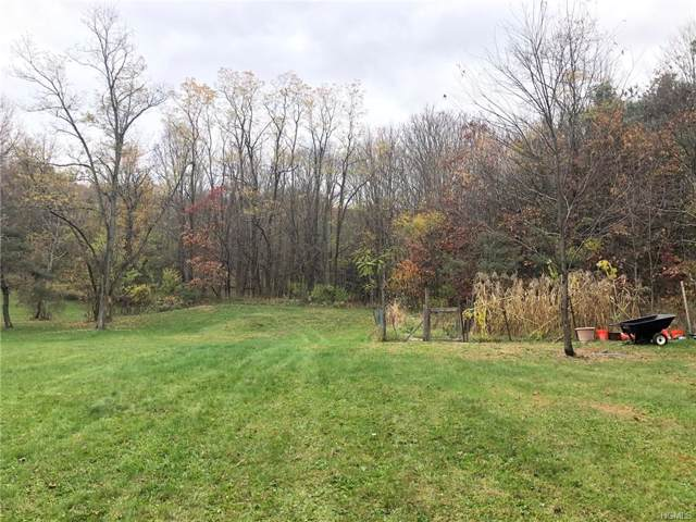 Traver Road, Pleasant Valley, NY 12569 (MLS #5123136) :: William Raveis Legends Realty Group
