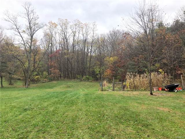 Traver Road, Pleasant Valley, NY 12569 (MLS #5123140) :: William Raveis Legends Realty Group
