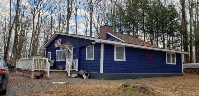 129 Park Drive, Parksville, NY 12768 (MLS #5123303) :: William Raveis Legends Realty Group
