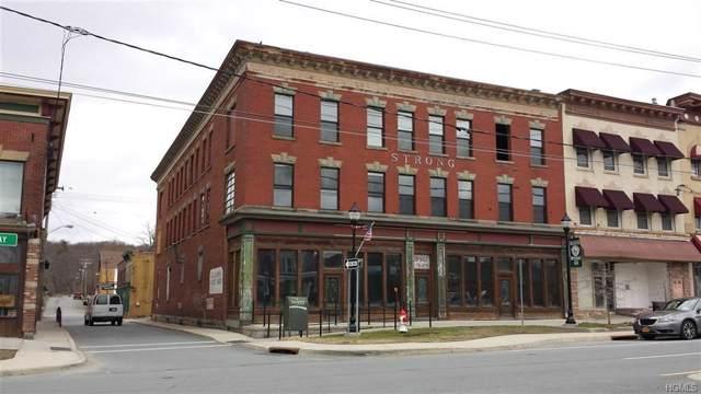 430 Broadway, Monticello, NY 12701 (MLS #5123740) :: William Raveis Baer & McIntosh