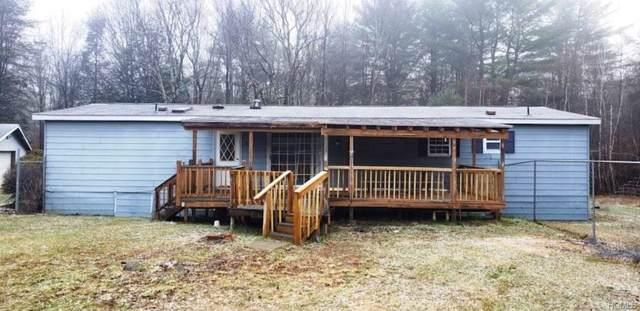217 Beaver Dam Road, Grahamsville, NY 12740 (MLS #5124311) :: Mark Boyland Real Estate Team