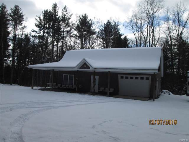 281 Camp Road, Ellenville, NY 12428 (MLS #5125086) :: William Raveis Legends Realty Group