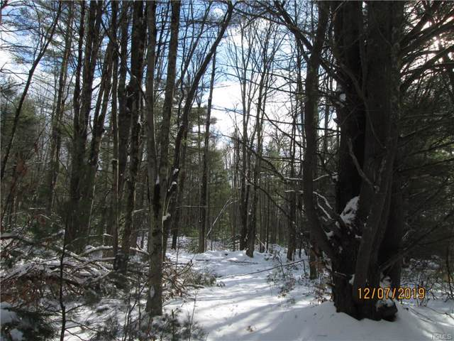 tbd Camp Road, Ellenville, NY 12428 (MLS #5125261) :: William Raveis Legends Realty Group