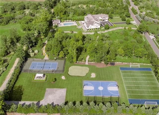 5 Sarosca Farm Lane, Purchase, NY 10577 (MLS #5125784) :: Marciano Team at Keller Williams NY Realty