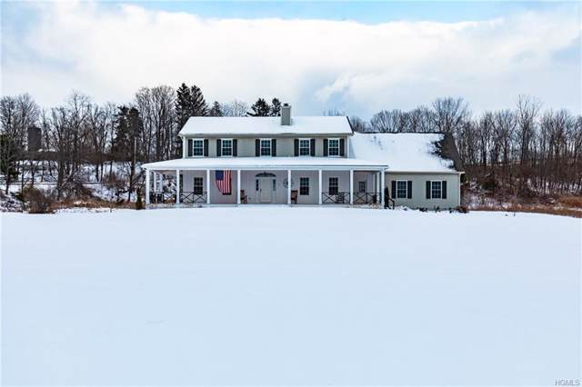 7 Lauren Lane, Staatsburg, NY 12580 (MLS #5125908) :: The Home Team