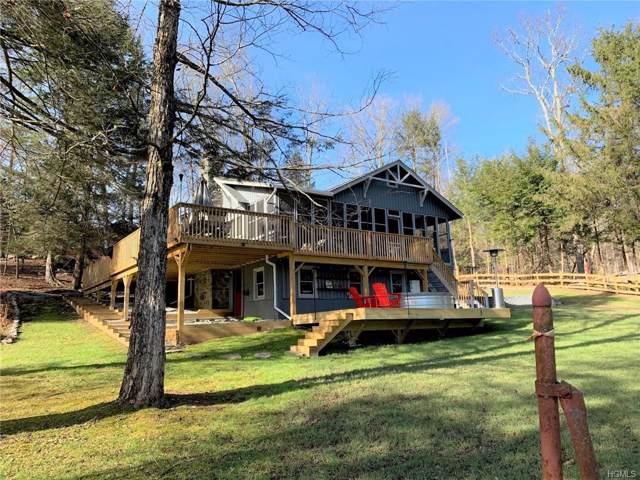 66 E Catskill Trail Tr 103P, Smallwood, NY 12778 (MLS #5126993) :: William Raveis Baer & McIntosh