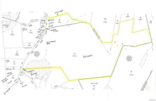 tbd Red Star Road, Ellenville, NY 12428 (MLS #5127227) :: Cronin & Company Real Estate