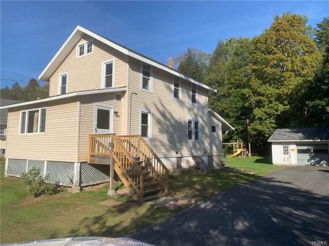 1765 Shandelee Road, Livingston Manor, NY 12758 (MLS #5127956) :: Mark Boyland Real Estate Team