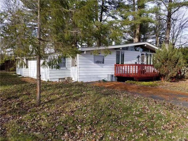 32 Lakeview Road, Kauneonga Lake, NY 12749 (MLS #6000867) :: William Raveis Baer & McIntosh