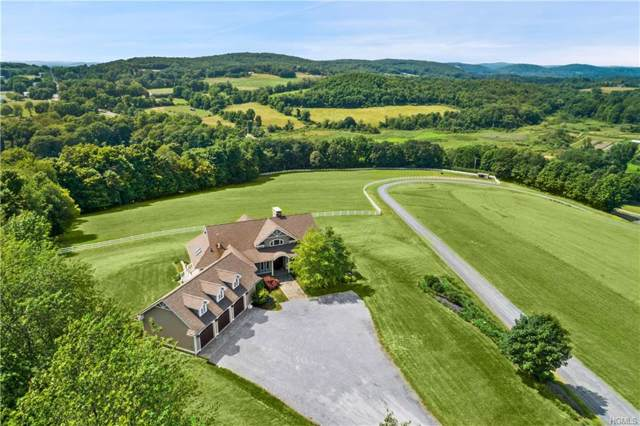 3978 New York 199, Pine Plains, NY 12567 (MLS #6000923) :: William Raveis Baer & McIntosh