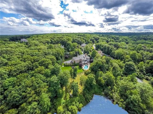 16 Patriots Farm Place, Armonk, NY 10504 (MLS #6000941) :: Mark Seiden Real Estate Team