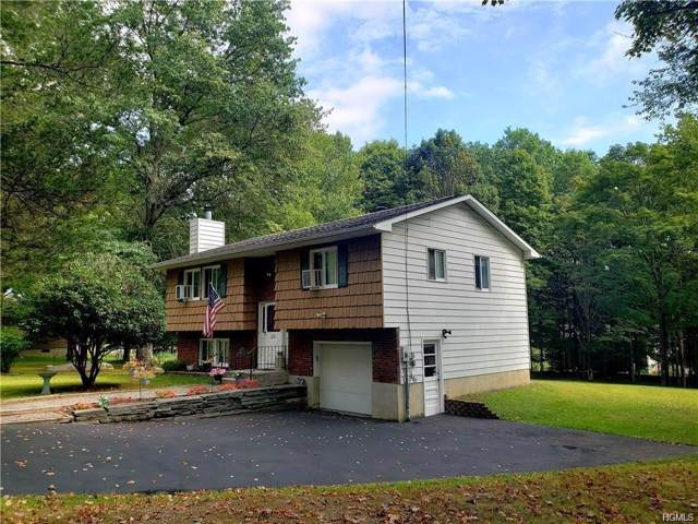 210 Jansen Road, Pine Bush, NY 12566 (MLS #6001670) :: Mark Boyland Real Estate Team