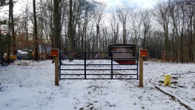 206 E Pond Road, Woodridge, NY 12789 (MLS #6002430) :: Mark Boyland Real Estate Team