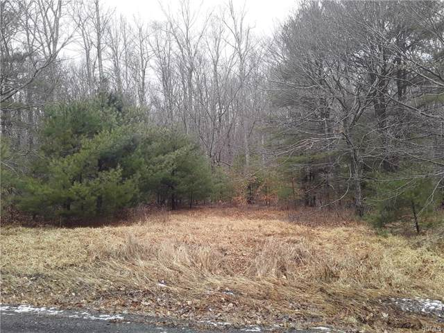 N/S French Clearing Road, Forestburgh, NY 12777 (MLS #6003314) :: Mark Boyland Real Estate Team