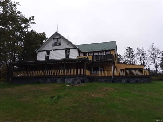 799 Shandelee Road, Livingston Manor, NY 12758 (MLS #6003383) :: Mark Boyland Real Estate Team