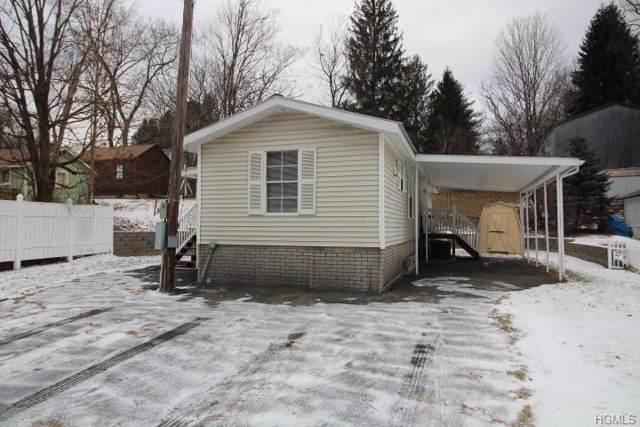 5 Debruce Road, Livingston Manor, NY 12758 (MLS #6003616) :: Mark Boyland Real Estate Team
