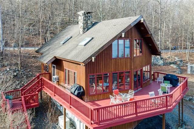 7 Lakeview Drive, Holmes, NY 12531 (MLS #6003672) :: William Raveis Baer & McIntosh