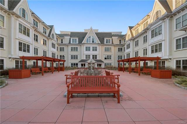 225 Stanley Avenue #213, Mamaroneck, NY 10543 (MLS #6004238) :: Kendall Group Real Estate | Keller Williams