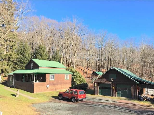 921 Dahlia Road, Livingston Manor, NY 12758 (MLS #6004566) :: Mark Boyland Real Estate Team