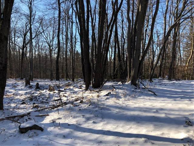 Houghtaling Road, Neversink, NY 12765 (MLS #6005813) :: Mark Boyland Real Estate Team