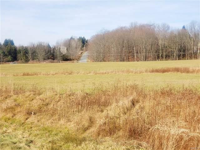 Gabel Road, Delaware, NY 12723 (MLS #H6006041) :: Cronin & Company Real Estate