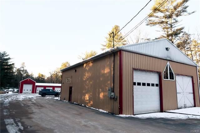42 Proctor, Highland, NY 12732 (MLS #H6006043) :: Cronin & Company Real Estate