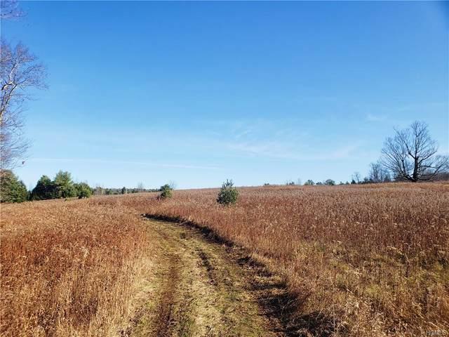 Benmosche Road, Monticello, NY 12701 (MLS #6006053) :: Cronin & Company Real Estate