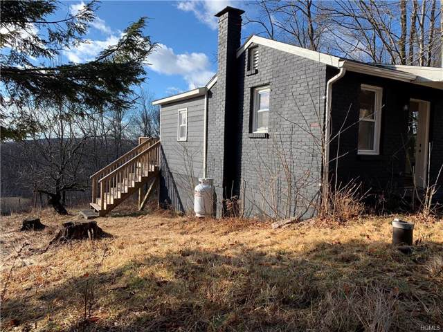 430 Red Hill Knolls Road, Grahamsville, NY 12740 (MLS #6006529) :: Mark Boyland Real Estate Team