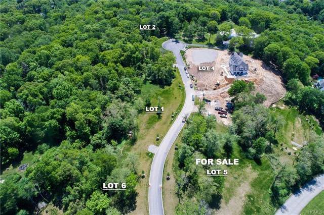 3 Deer Ridge Lane, Armonk, NY 10504 (MLS #6006593) :: Mark Boyland Real Estate Team