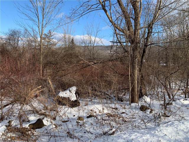 Lower Wisner Road, Warwick, NY 10990 (MLS #6007182) :: William Raveis Baer & McIntosh