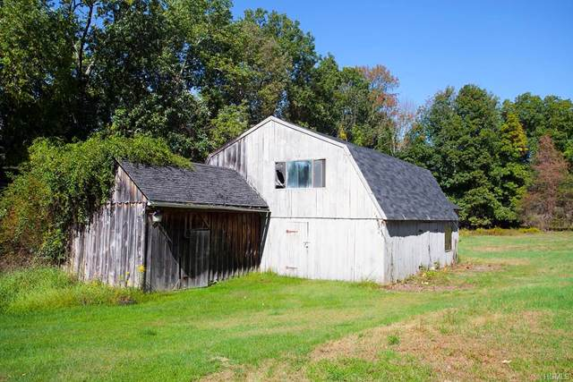 61 Benedict Road, South Salem, NY 10590 (MLS #6007247) :: William Raveis Baer & McIntosh