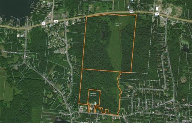 Nys Hwy 17B & Sgt. Andrew Brucher Road, White Lake, NY 12786 (MLS #6007297) :: William Raveis Baer & McIntosh