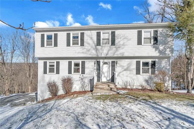 101 Woodland Road, Highland Mills, NY 10930 (MLS #6007298) :: William Raveis Baer & McIntosh