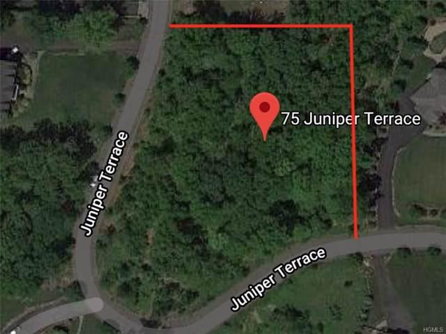 75 Juniper Terrace, Tuxedo Park, NY 10987 (MLS #6007318) :: William Raveis Baer & McIntosh