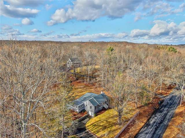 484 Plutarch Road, New Paltz, NY 12528 (MLS #6007397) :: Cronin & Company Real Estate