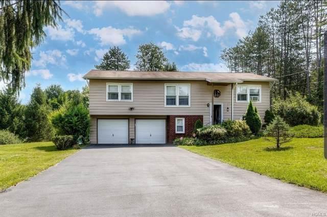 2 Liberty Street, New Paltz, NY 12561 (MLS #6007476) :: Cronin & Company Real Estate
