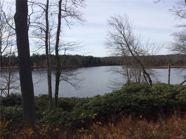 N/A Little Ireland Road, Livingston Manor, NY 12758 (MLS #6007979) :: William Raveis Baer & McIntosh