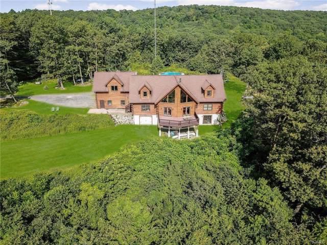 390 Mt Zion Road, Marlboro, NY 12542 (MLS #6008540) :: Marciano Team at Keller Williams NY Realty