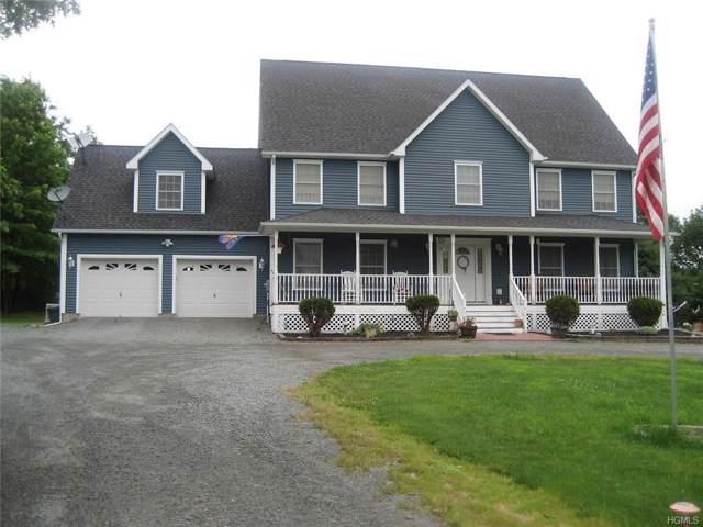 340 Hessinger Lare Road, Livingston Manor, NY 12758 (MLS #6008805) :: Mark Boyland Real Estate Team