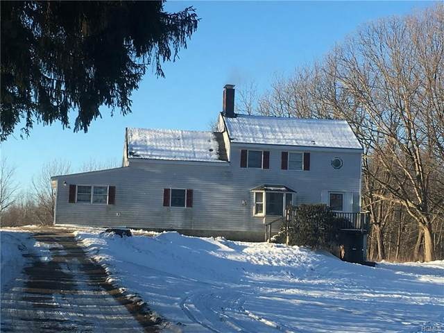 201 Chandler Lane, Montgomery, NY 12549 (MLS #6008916) :: Cronin & Company Real Estate
